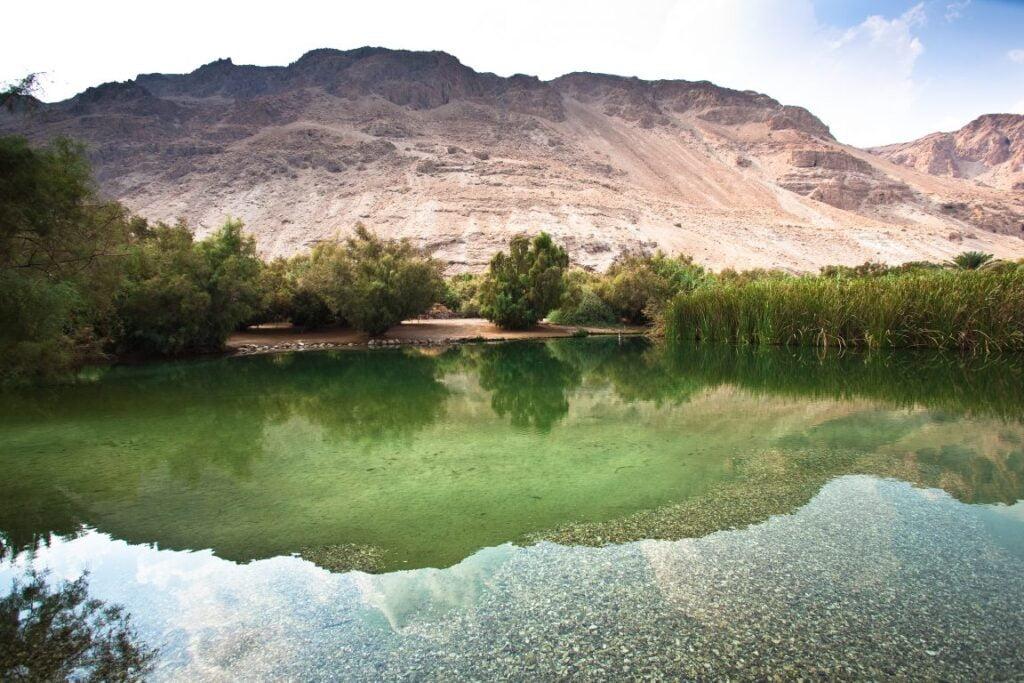 Enot Tsukim Nature Reserve in Israel