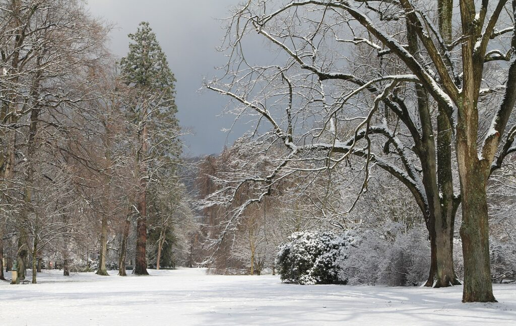 Winter in Baden-Baden at Lichtentaler Allee by Brenners Park-Hotel Spa