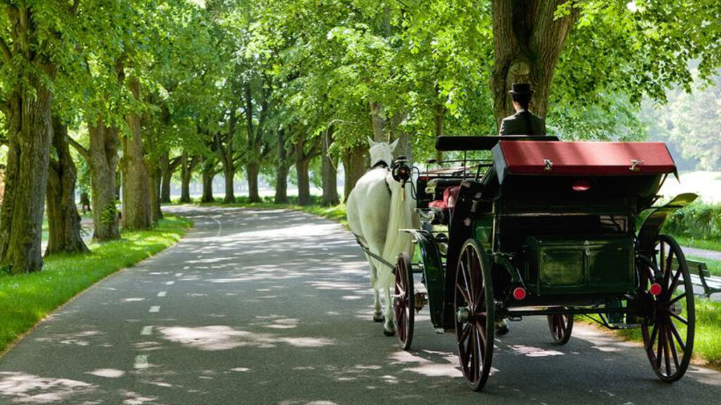 A-Charming-Carriage-Ride